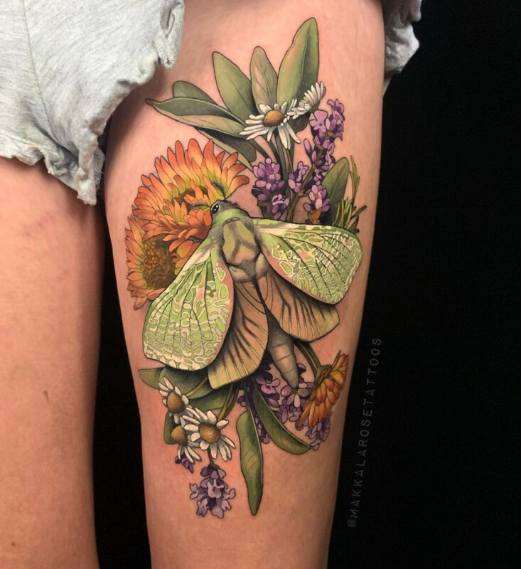 Puriri Moth & Flowers